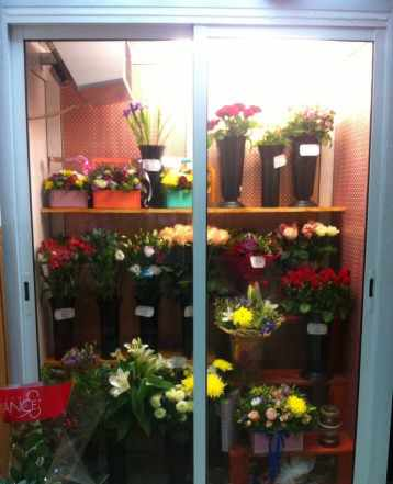 Холодильник Холодильная Камера для цветов