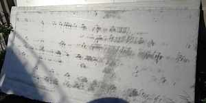 Нержавейка лист 30001500 толщина 2мм