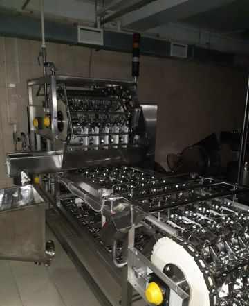 Завод глубокой переработки яица
