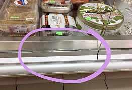 """Холодильная кондитерская витрина """"Нарочь"""" - 1шт"""